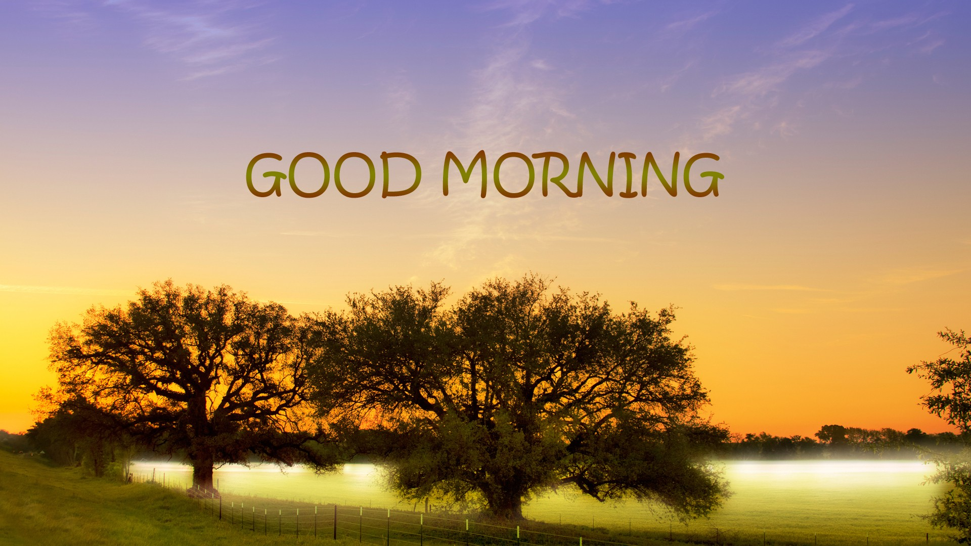 good morning pictures hq free download 2474 seek gif