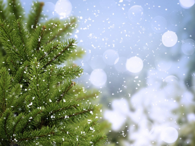 Comments For Abstract Winter Tree, Bubbles And Snowflakes Background