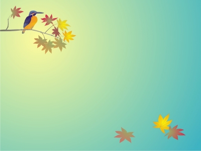 Animal Bird PPT Background, Animal Bird Ppt Backgrounds, Animal Bird
