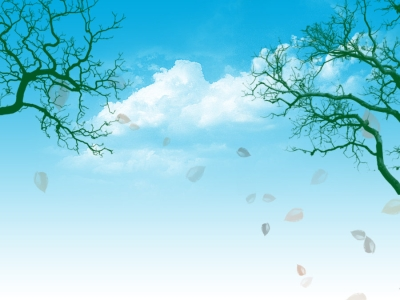 Blue Sky and Trees Download PowerPoint Backgrounds  PPT Backgrounds #4693