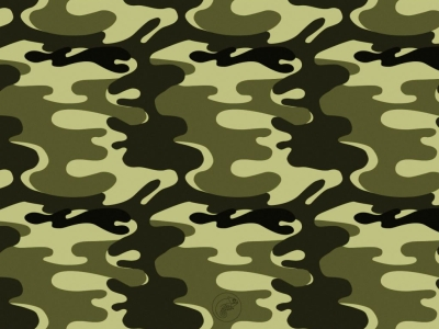 Camo Background Wallpaper  HD Wallpapers