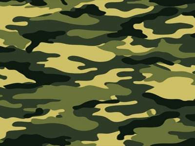 Camo Wallpaper  HD Wallpapers Backgrounds Of Your Choice