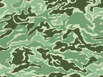 Camouflage Background Quotes QuotesGram