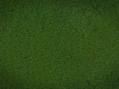 Cartoon Grass Background Image Search Results