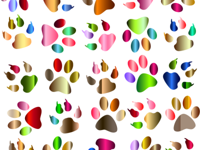 Colorful Paw Print Background – Cfxq