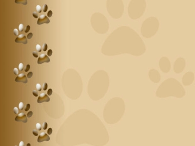 Dog Paw Background Dog Paw Print Background