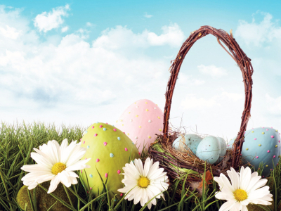Easter Eggs with Flowers Backgrounds  Nature, Powerpoint  PPT   #6115