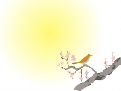 Free Beauty Bird Backgrounds For PowerPoint  Animal PPT Templates