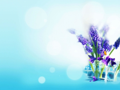 Free Flower Tulip Backgrounds For PowerPoint  Flower PPT Templates