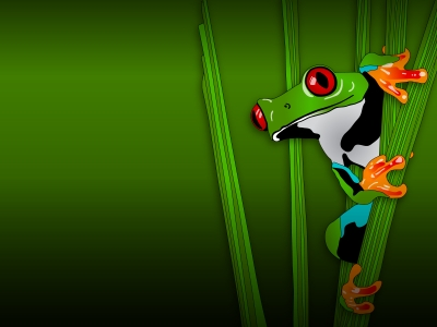 Green Frog Animal Backgrounds  Animals, Green  PPT Backgrounds