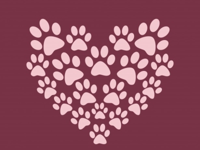 Heart Paw Print Background Free Stock Photo  Public Domain Pictures