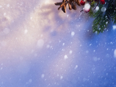 Holiday Christmas Image Background Wallpaper for PowerPoint   #3665