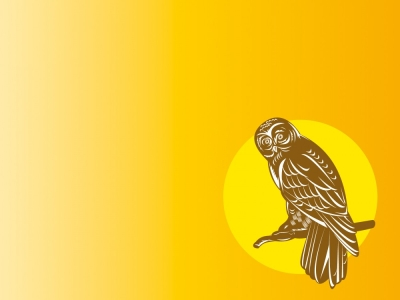 Owl Clipart Backgrounds  Animals, Yellow  PPT Backgrounds