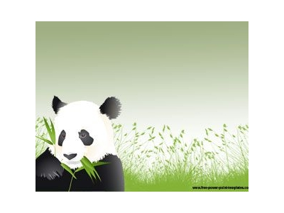 Panda Powerpoint Animal Powerpoint Powerpoint Presentations Powerpoint