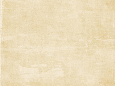 Parchment background white parchment light parchment paper parchment   #4466