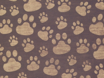 Paw Print Background Surface Pattern 69479 2048x1152 Jpg