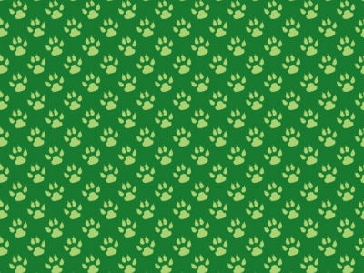 Paw Print Background Wallpaper Free Stock Photo  Public Domain