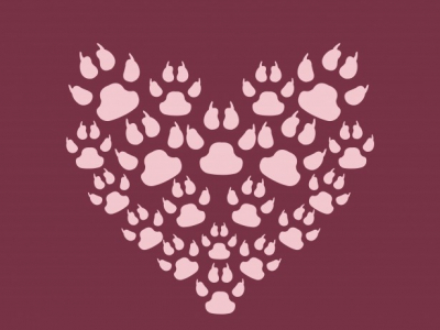 Paw Print Heart Background Free Stock Photo  Public Domain Pictures