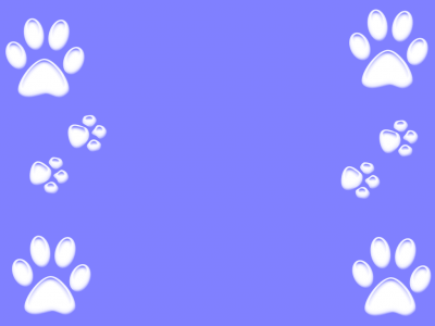 Paw Print Wallpaper Desktop  Tera Wallpaper