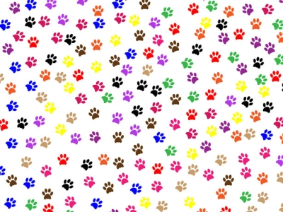 Paw Prints Background Free Stock Photo  Public Domain Pictures