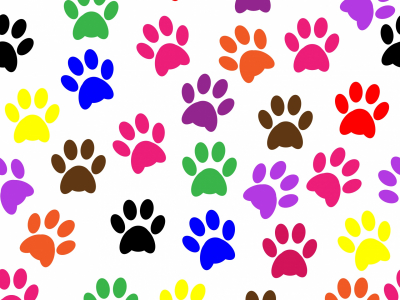 Pics Photos  Paw Print Paw Prints Wallpaper Pattern