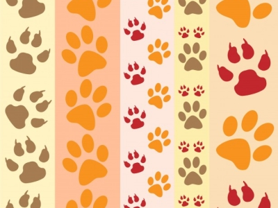 Pics Photos  Paw Print Wallpaper By Karen Arnold