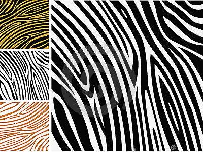 Powerpoint Backgrounds Zebra Image Search Results