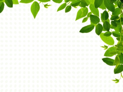 Real Leaves Design Backgrounds  Nature  PPT Backgrounds
