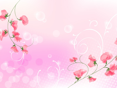 the wallpaper  Two Red Branches of Flower and Light Pink Background   #3835