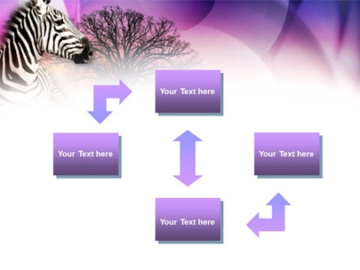 Zebra In Sunset Free PowerPoint Template, Backgrounds  00845
