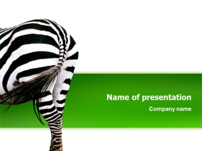 Zebra background for powerpoint download free zebra for zebra powerpoint template toneelgroepblik Gallery