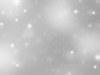 Silver Light Bubbles Background