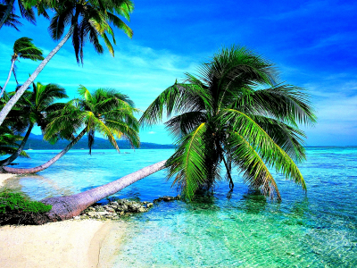 Download Tropical Beach Images Wallpapers  Desktop Backgrounds For