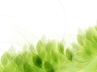 light green leaf pattern background desktop small – Ananta Spa #6743