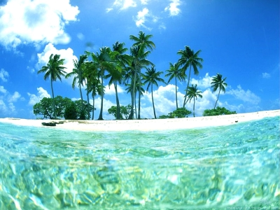 Tropical Beaches Hd Background Wallpaper 51 HD Wallpapers