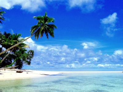 Tropical Paradise Background Tropical Paradise Wallpaper » Walldevil