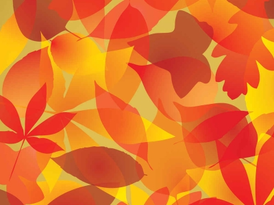 Download • Autumn 2013 – The Best Free Vector Autumn Leaves