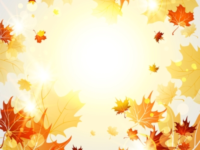 Autumn Leaves Background Bright autumn leaves vector backgrounds 06   #8249