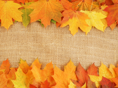 autumn leaves textures, download photo, background, background, autumn   #8254