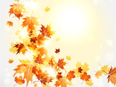 Cartoon Fall Leaves Background Bright autumn leaves vector backgrounds   #8266