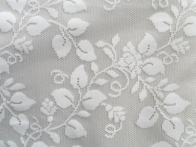 Lace Background  Viewing Gallery