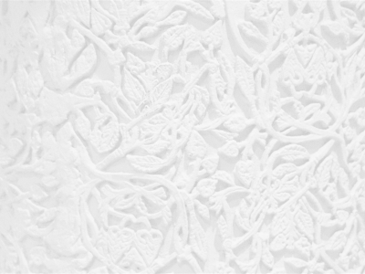Vintage White Lace Background white lace wallpaper background related   #8572