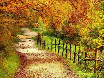 Wallpaper: Super Autumn Scenery Wallpapers