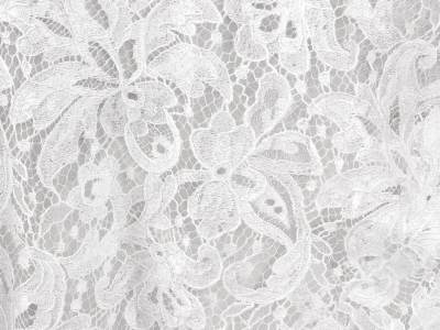 Wedding White Lace Background Stock Photo, Picture And Royalty   #8565