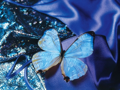 Abstract Blue Butterfly Art Wallpapers