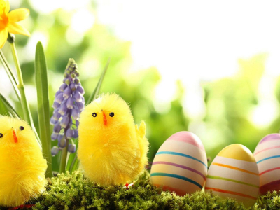 Easter Wallpaper 15 Colorful Images Easter Festival