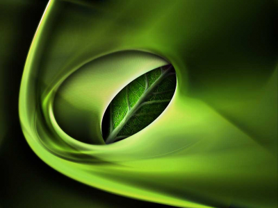 Slide Background Is 3d And Green Lors With Leaf  3D Green Slide