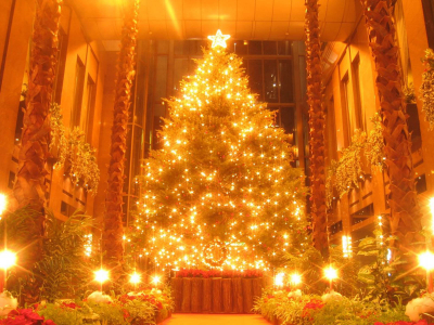Tag: Christmas Tree Deration Photos, Images, Wallpapers, Pictures
