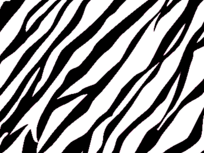 Zebra Print Background  Free Images at Clker   vector clip art   #9898