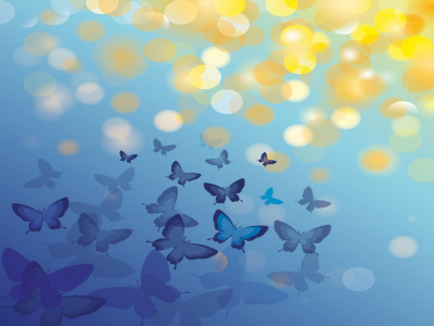 animal butterfly blue backgrounds   animals, blue, design  #11129